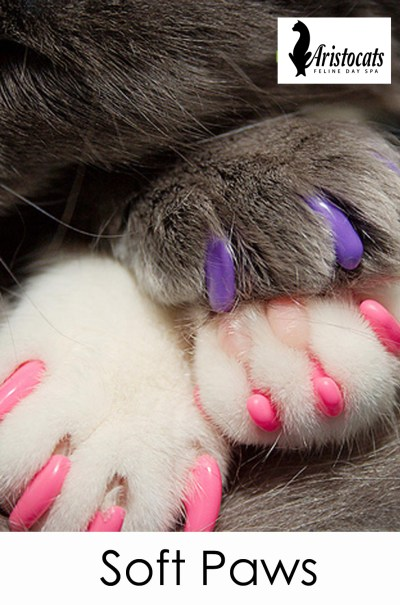 soft paws aristocats