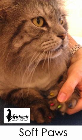 soft paws nail caps 1