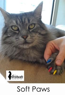 soft paws nail caps 4