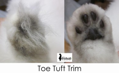 toe tuft trim 2